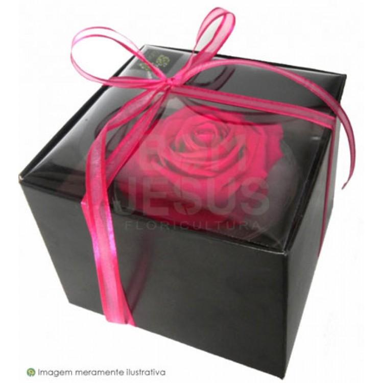 PRA VOCÊ GUARDEI O AMOR... (rosa preservada)